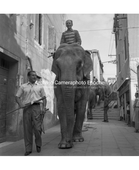 Venice Circus - Elephant Ride In Town
