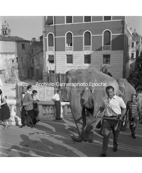 Venice Circus - Getting Up 'Scalzi' Bridge