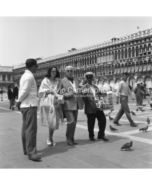 A Walk In St. Mark Square